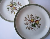 Vintage Alfred Meakin Hereford Staffordshire Fruit Dinner Plates Set of Four