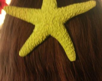 Starfish, Green, lime green, ocean, Beach wedding, tropical wedding, bridal, starfish barrette, starfish hair clip, fish, ocean clip