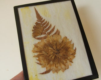 Shabby Vintage Dried Flower in frame