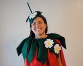 DIY Strawberry  Do It Yourself Adult Costume  Halloween Costume  Strawberry Costume