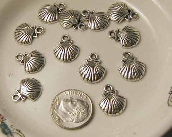 Pewter Shell Charms - 12 pcs - Silvertone - PS716AB