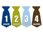 12 Pre-cut Monthly Baby Milestone Waterproof Glossy Stickers - Neck Tie Shape - Design T001-02