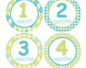 12 Monthly Baby Milestone Waterproof Glossy Stickers - Just Born - Newborn - Weekly stickers available - Design M029-01