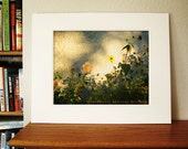 CLEARANCE ART -Flower Photography -Matted Print for 11x14 Frame -Yellow Flower -Bedroom Decor -Gifts for Her