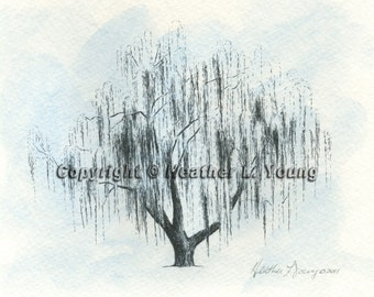 Weeping Willow Tree Sketch Aurora No 2 in Icy Blue