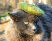 Camo Cat - Mini Camouflage Wool Felted Beret