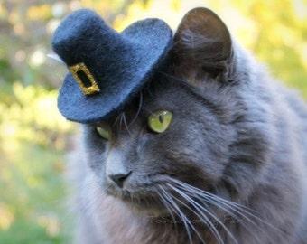 Thanksgiving Hat for Cats - Pilgrim Cat Hat - Wool Felted Pet Hat - Cat Pilgrim Costume - Pet Costume - Cat Photo Prop
