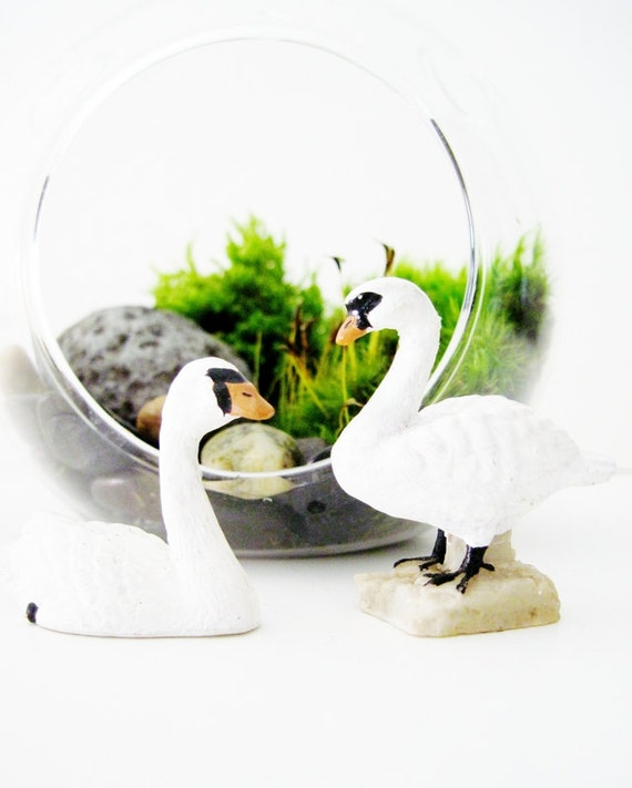 miniature swan terrarium decoration swan lake by doodlebirdie. Black Bedroom Furniture Sets. Home Design Ideas