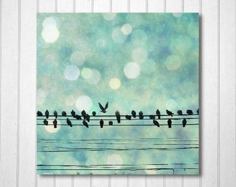 BUY 2 GET 1 FREE Nature Photography, Blue, Bokeh, Birds, Nursery, Wall Deocr, White, Cold, Winter, Magical, Black - Snow Birds