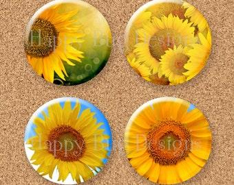 """Sunflower Magnet Gift Set of 4 1.25"""" 1-1/4 inch"""