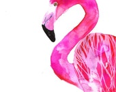 Flamingo, print 30x40 cm (12x15,7 inch)