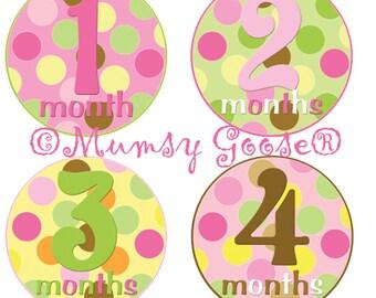 Baby GIrl Age Stickers Modern Girl Milestones 12 Montlhy Baby stickers. Polka Dots Milestone