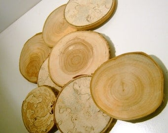 25 Drilled Large Assorted  Blank Tree Branch Slices  3.5  to 4 inch Coaster Size