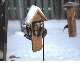 Woodpecker Suet Feeder