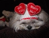 Will You MARRY ME - Wedding proposal Dog hat - Floating Hearts - Valentine - 2 to 20 lb pets-made to order