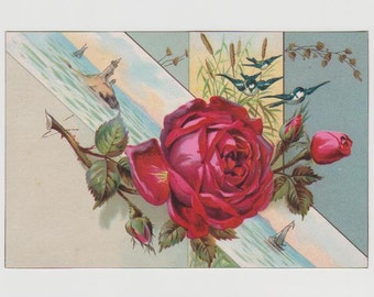 Bluebirds Red Rose Lighthouse Vintage 1890's Victorian Trade Card