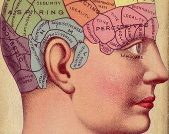 "Vintage Surreal Print ""Phrenology Chart"" Antique Medical Illustration - Fortune Telling Occult Anatomical - Head Skull Gothic Dark VIctoria"