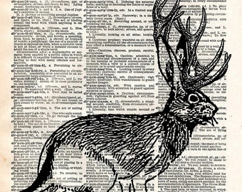 Jackalope Vintage Book Art Print - Upcycled Recycled Antique Book Print - Faux Taxidermy Rabbit Print - Mythical Animal Natural History