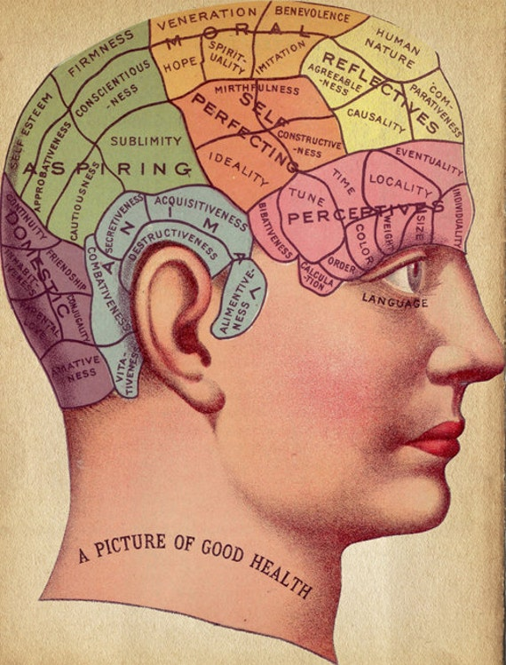 "Vintage Surreal Print ""Phrenology Chart"" Antique Medical Illustration - Fortune Telling Occult Anatomical - Head Skull Gothic Dark VIctoria"