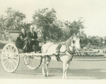 Quebec Horse Drawn Carriage Ride Summer Vacation Vintage Black and White Photo Photograph