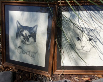 Framed Cat Drawings