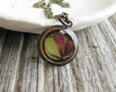 Small Leaf Necklace Pressed Leaf Preserved Plants Resin Botanical Jewelry Barberry Bush Dried Flower Nature Gift