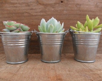 120 Mini Silver Tin Metal Pails, Favor Size, DIY Weddings, Favor Containers, Rustic
