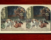 Boy Dog Stereograph Stereo View Card Photo, Turn of the Century Boy and His Dog
