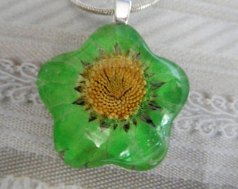 Lime Green Daisy Glass Flower Shaped Pressed Flower Pendant-Symbolizes Innocence, Loyal Love-Nature's Wearable Art-Gifts Under 25