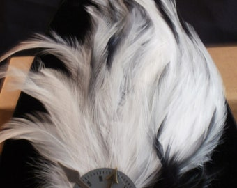Steampunk Feather Clock Face Hair Fascinator Clip Barrette - Black & White Feather Hackle Pad for Burlesque, Costume, Faire