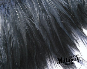 Navy Blue Hackle Feather Fringe for fascinators, millinery and crafts  (Around 60 feathers)