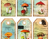 Mushrooms 6 Digital Images 2,5 x 4,5 Inch for Gift Tags, Labels and more