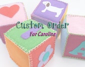 Custom Order for Caroline - Baby Benjamin Set of 8 hand stitched felt blocks