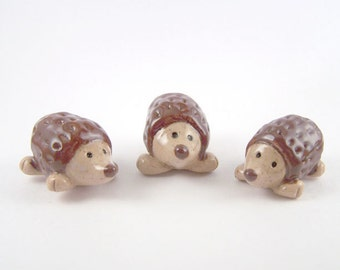 Miniature Hedgehogs - pair