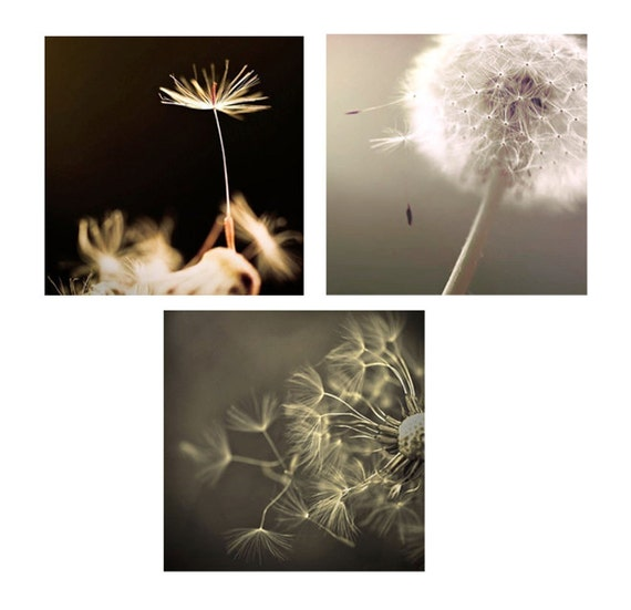 Sale - Dandelion Art- Neutral Bedroom Decor- Black Gray Brown Wall Art / Bedroom Wall Art/ Dandelion Print  Save 50%