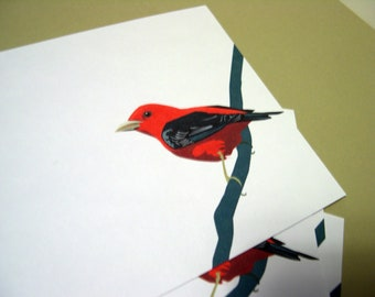 Scarlet Tanager  Notecards A2 set of 4