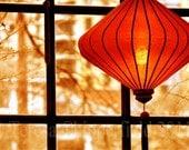 Silhouette, Fine Art Digital Photo Print  - Chinese Lantern - View from a Window - Portland Oregon Wall Art, Ellie Deli Home Decor, 8 x 12