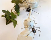 Two Handmade Black Spiders with Yellow Perfect Gift for Entomoligists and Bug Lovers