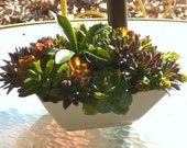 Large Faux Succulent Centerpiece In White Vase, Artificial succulent Planter Indoor Garden
