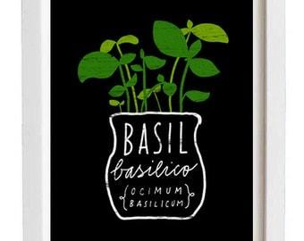 "Basil Italian Herb Mediterranean Green Kitchen Art Print  11""x15"" - archival fine art giclée print"