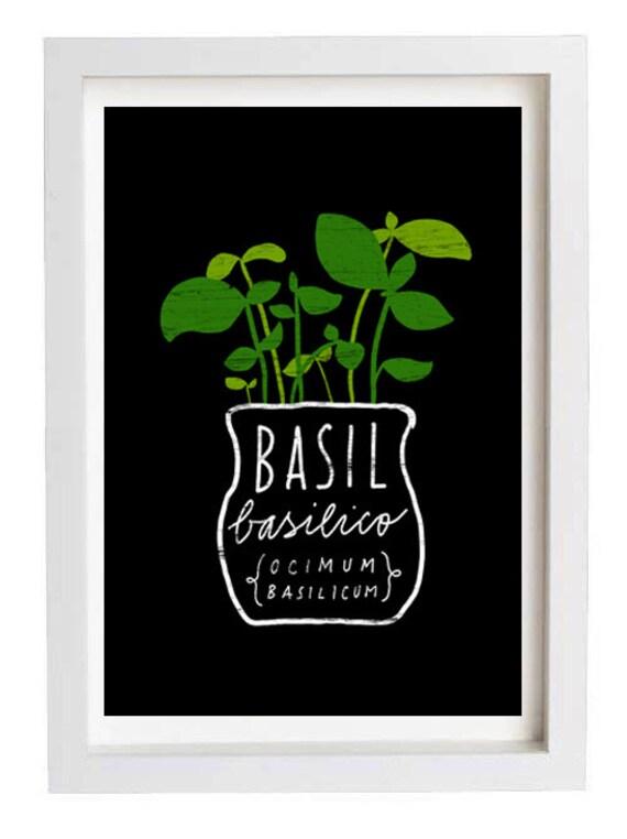 "Basil Herb Mediterranean Green Kitchen Art Print  11""x15"" - archival fine art giclée print"