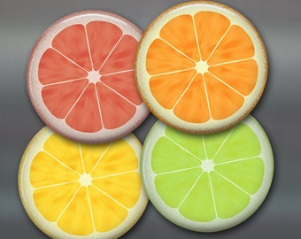 "3.5"" citrus kitchen decor, refrigerator Magnets, citrus fruit fridge magnets, , set of 4 magnets, kitchen decor, large fridge magnet"