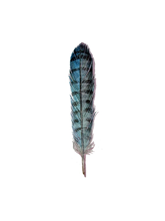 Blue Jay Feather - Nightly Study 418 - Original Watercolour