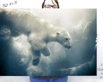 Polar Bear art,  Nature Photography,  Large wall art,  24 x 36,  poster, animal print,  arctic blue, Nature wall art, Winter Art, Polar Bear