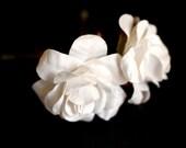 Hello White Rose, Wedding Hair Accessories, Bridal Hair Accessory, Bridesmaid Hair Flower, White Hair Flower, Brass Bobby Pin Set of 2