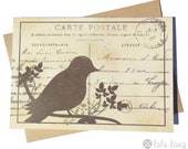 Vintage Inspired Bird Note Cards - Set of 6