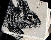 B. Poetic Bunny Venetian Stone Coasters