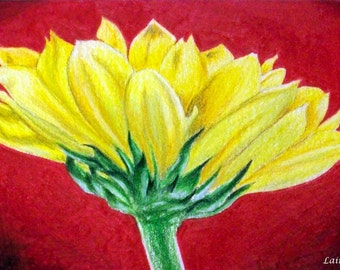 Sunflower - Matted 8x10 Watercolor print - Colored Pencil Drawing, flower, yellow, summer, fall - Day 172 Print
