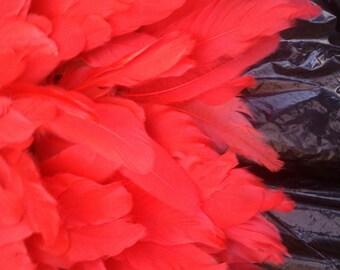30 inch Dark Red Juju Hat