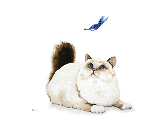Watercolor cat - Cat and Butterfly - Signed Fine Art Print - white and brown blue eyed cat with blue butterfly